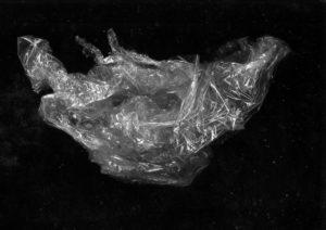 "Max Sudhues, ""Movement Study"", 2018, Fotografie (gerahmt), 42x59,4, Foto: Max Sudhues"