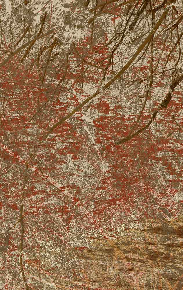 "Ophelia Beckmann, ""2017-07-verzweigt-00010-1-a"" 2017, Edition: 2/2 + 1 AP, Digitale Fotoarbeit, Fineart Inkjetprint auf Museo, Max, kaschiert auf Alu Dibond 94,58 x 150 cm, Bildrechte: © Susanne Ophelia Beckmann"